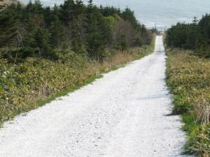 白い道通行