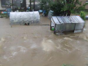 氾濫したクサンル川